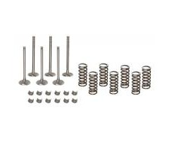 Valve Train Kit Ford 2000-4130 Oversize